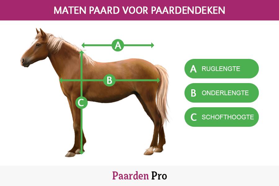 afmetingen paard voor paardendeken