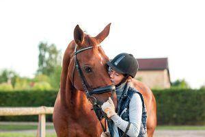 hoe win je het vertrouwen van een paard
