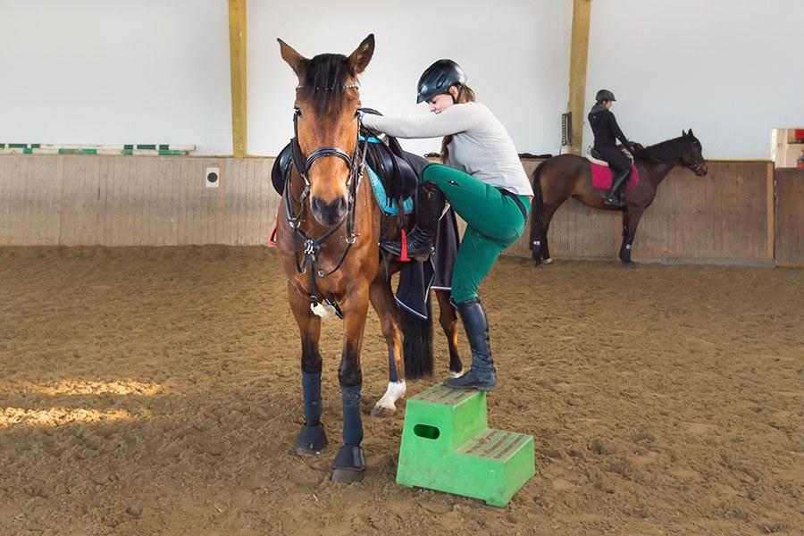 Een paard bestijgen: correct opstijgen bij het paard
