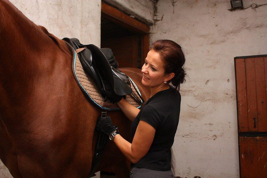 Een paard opzadelen