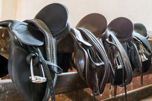 paardenzadel kopen