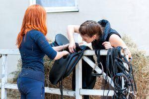 paardenzadel schoonmaken en poetsen
