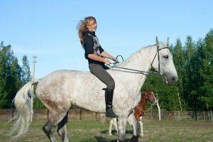 paardrijden zonder zadel