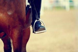 stijgbeugels paard