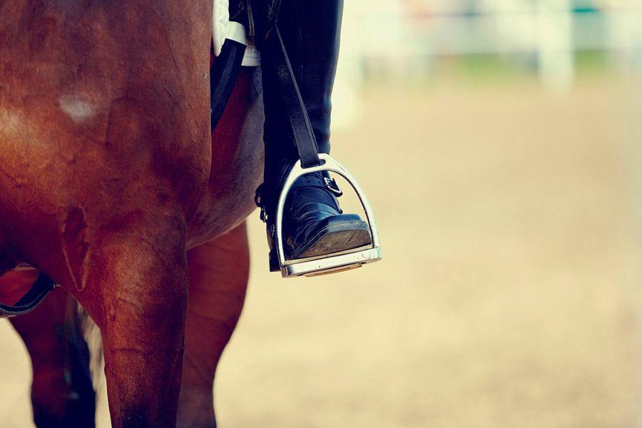 Stijgbeugels kopen: welke beugel past bij jou en je paard?