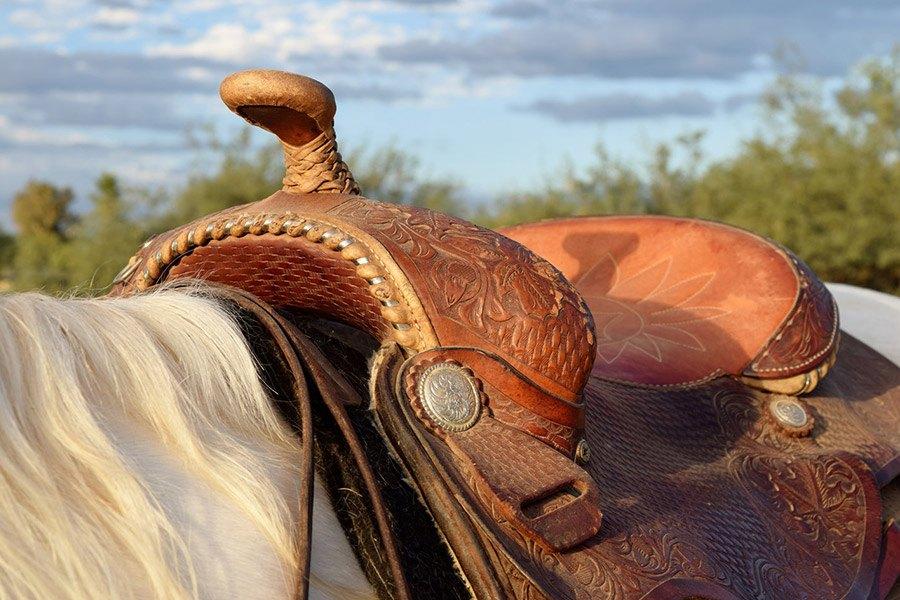 Het westernzadel: de verschillende soorten